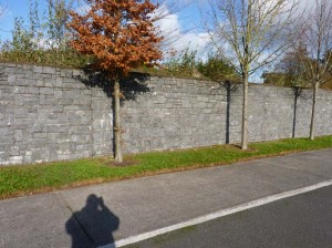 Kilkenny Limestone stone walls built for Castlelands in Midleton.
